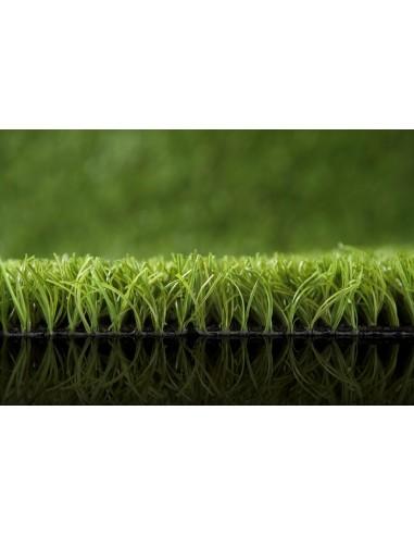Green Ascari